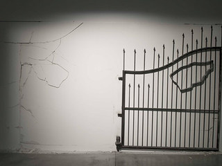 Untitled (The Gate),Shilpa Gupta