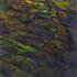 20101111203800-d3_imprint2