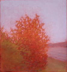 Red Bush,Elizabeth Noerdlinger