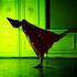20101113145133-09-10_jac_danse_smart_019