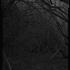 20101116084928-sc5