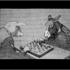 Gallo_chesscafe_web
