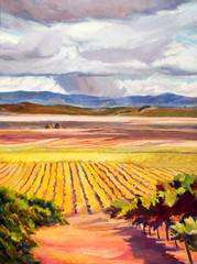 Carneros Vista, Kay Carlson