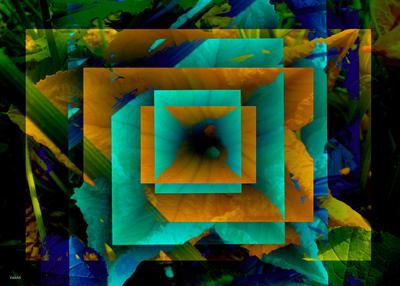 20101120084551-tropics