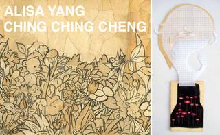 , alisa yang, Ching Ching Cheng