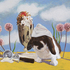 20101201112327-bunny