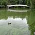 20101205063738-bowbridge