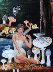 A Few Good Mushrooms, Teresa Petersen
