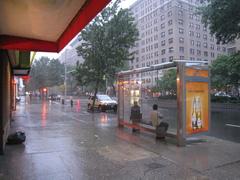 20101206092844-rainybdwy