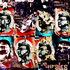 20101211150319-netaji_60x40_translite_c
