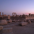 20101215153839-duskpalmyra