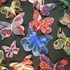 20101218091430-magical_butterfly3