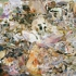 Cecilybrown_skulldiver4