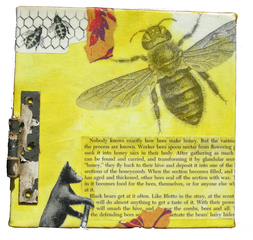Blotto and the Bee, Kim Bagwill