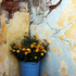 20101221075946-flowers_in_a_corner