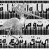 20101221164851-poster_heron_web