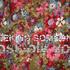 20101221230937-seekingsomeoneforweb