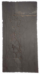 Sampsonia Imprint (D), Diane Samuels