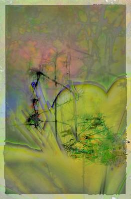 20110102134651-tulip_in_distress