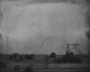 20110102143352-grapes