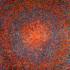 20110104205057-orange