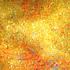 20110104205252-yellow