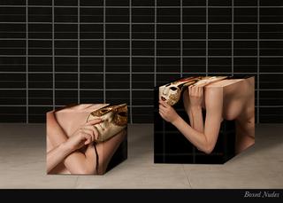 Boxed Nudes, Ricardo Barros