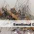 20110105132800-emotionaldiy