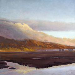 Across Bolinas Marsh, Richard Lindenberg