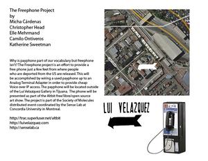 20110110104141-freephone