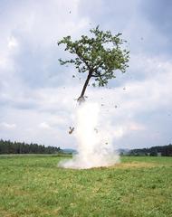 Raketenbaum (detail), Michael Sailstorfer