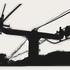 20110112232251-gondala_cable