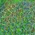 20110115071843-secrte_garden_acrylic_on_canvas_36_h_x_42_22w_