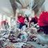 20110118071530-rosefeldt