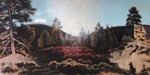 20110118151355-sunset_crater_park_2011__24_x_48_22_