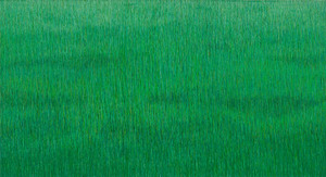 20110118155101-dark_green_grassland_2008_34x63-web