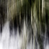 20110122124153-reeds_abstracted300dpi