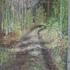 20110124102623-marrask10_003