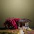 20110125102600-abandoned_house_niland_ca