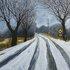 20110126175516-snow_tracks