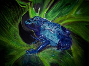 20110129044339-5_sarahhorvat_blue_poison_dart_frog_12x16