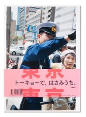 20110130082545-cover_japans