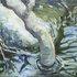 20110131192119-brook19