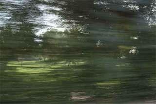 Country Club Flicker 1, Lesley Moon