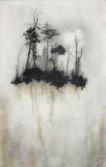 Reflection, Brooks Salzwedel