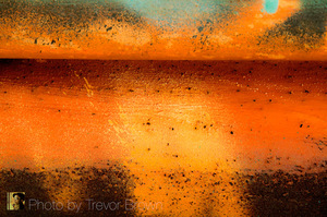 20110208165851-trevor_brown_speckled_fire