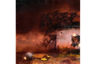 Star Gazing, Maria Foly