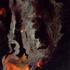 20110215224322-cradle_1