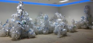 reverseflow, Carrie Ungerman