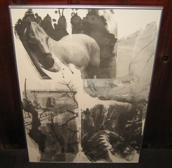 Horse Silt (Night Sights Series),Robert Rauschenberg